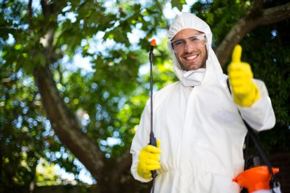 Pest Control in Barnes, Castelnau, SW13. Call Now 020 8166 9746