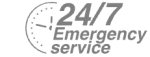24/7 Emergency Service Pest Control in Barnes, Castelnau, SW13. Call Now! 020 8166 9746